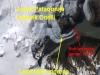 analiza-ledenikov